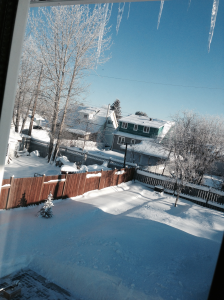 Winter - Nov 2013