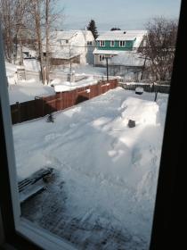 Winter Back Feb 2014