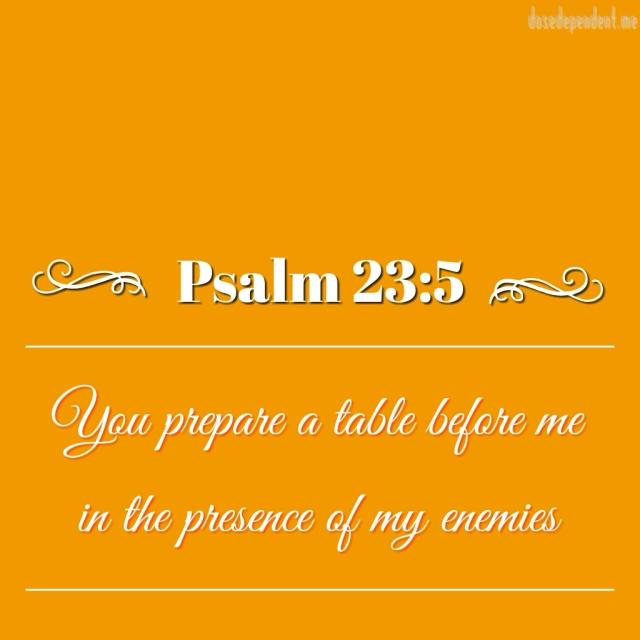 Psalm 23-5