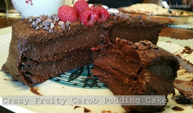 Fruity Carob Pudding Cake Sliced - 2
